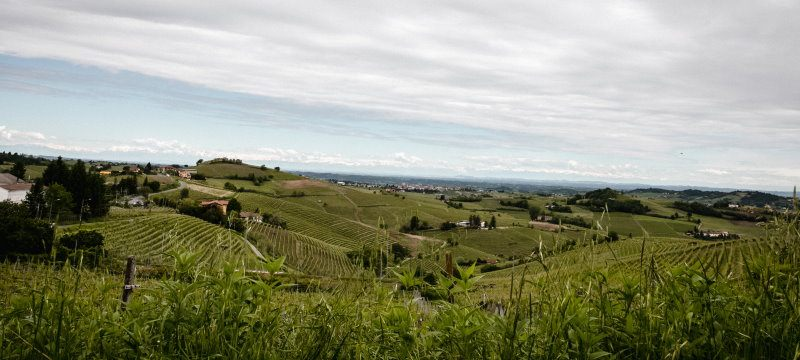 monferrato-colline-unesco